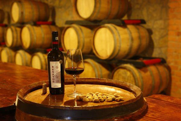 vinul renatus