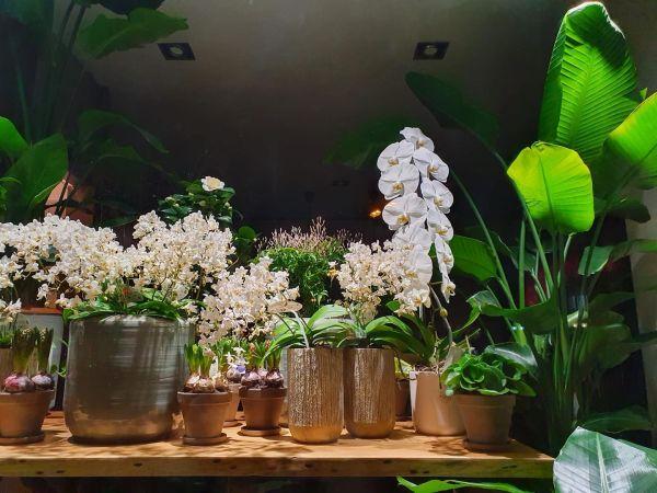 #OrașulFetelor: sunt cel puțin 6 florării minunate la București